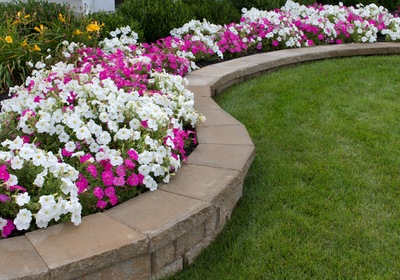 Landscaping Tips to Add Interest and Ambiance