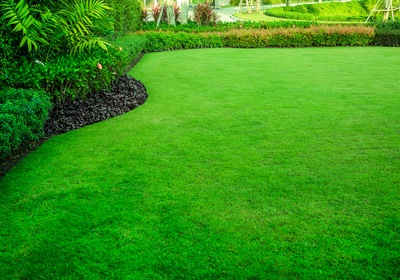 3 More Tips for a Healthier Lawn
