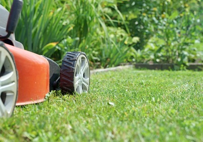 How New Smyrna Lawn Care Professionals Can Help You Mow Less