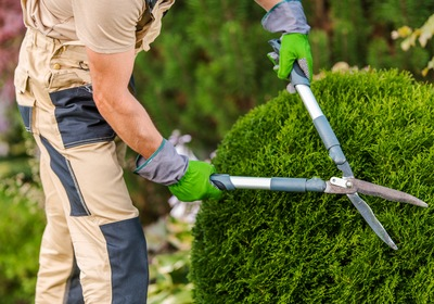 4 Questions to Ask a Landscape Contractor