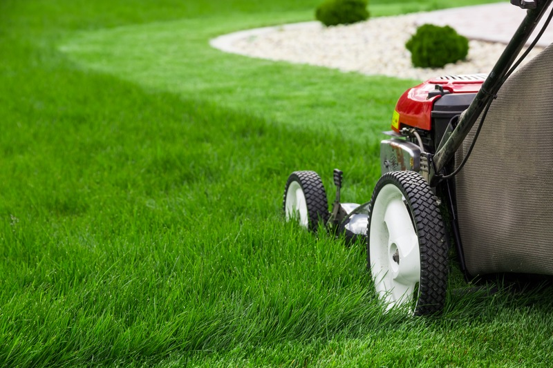 4 Tips for a Great-Looking Lawn