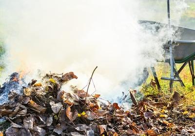 3 Alternatives to Burning Yard Waste