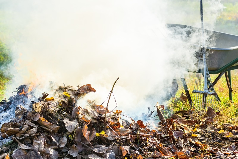 3 Alternatives to Burning Yard Waste